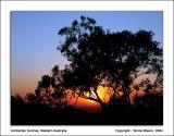 Sunrise Silhouette #1