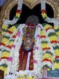 Swamy Desikan Ahobila Mutt Thiruvallikeni