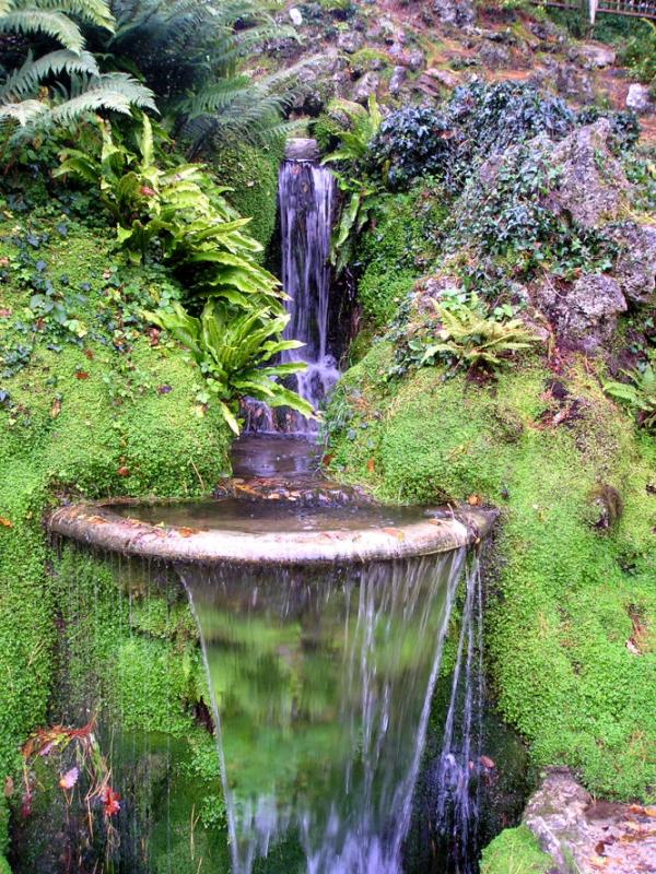 Japanese waterfall at Powerscourt