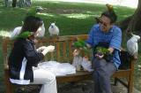 don't feed the birds -2