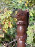 squirrel walking stick carved by Steve Esterby DSCN5183.jpg