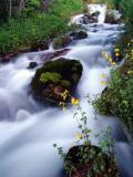 Cascade Springs, UT