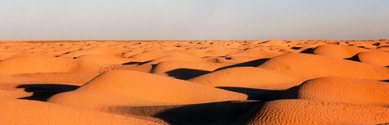 The Sahara near Douz