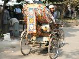 Dhaka - the Rickshaw Capital of the world (luckily no hills!)