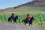 Traditionally clad Basotho pony riders