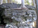 limestone2.jpg