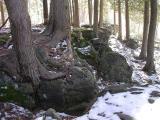 limestone6.jpg