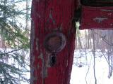 red door in the forest - 2