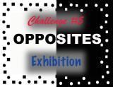 Exhibition Gallery