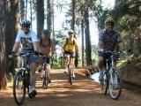 Dave & Linda Bike Rides