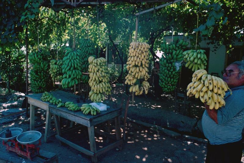 Anamur Banana seller