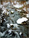Brandywine feeder in Winter pc.jpg