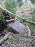 Swamp Trail - More damaged boardwalk