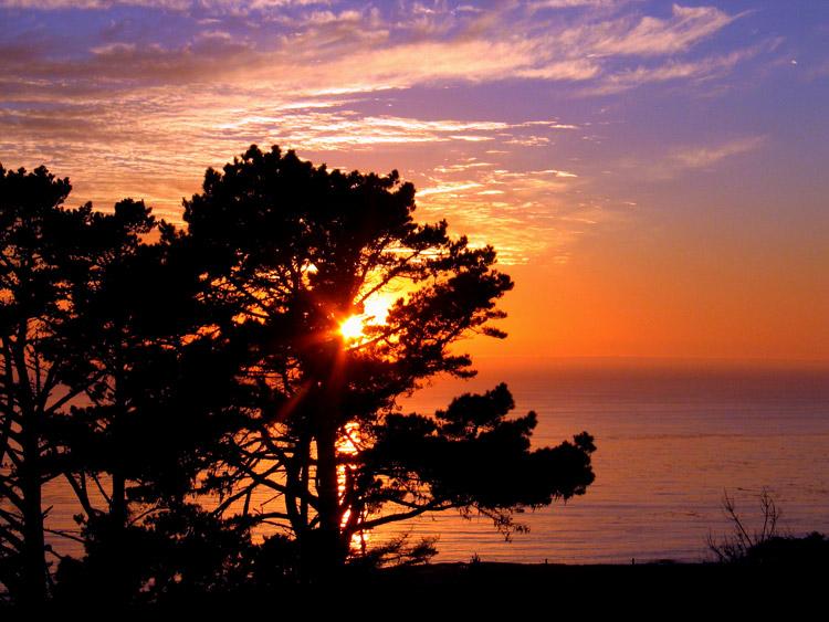 Cambria Sunset