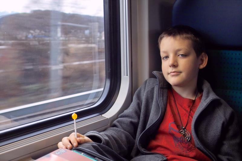 Titian on the Train