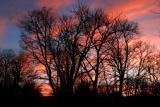 sunrise-11-03-d2281.jpg