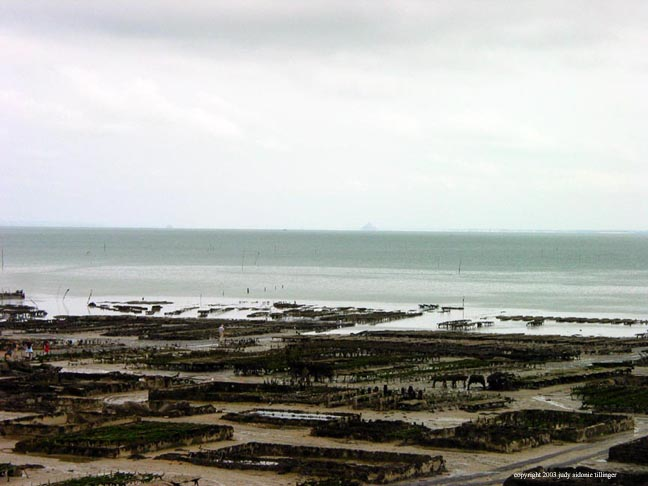oyster beds, cancale