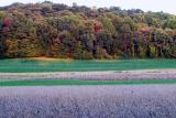 Early Fall PA