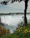 Canadian Falls4