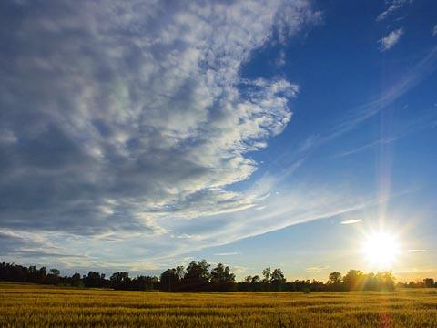 Big Sky Clouds & Sun