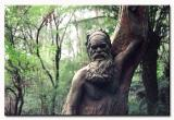 Welcome to Melbourne - William Ricketts Sanctuary