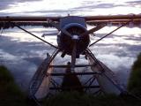 090_010 Lake Hood Beaver