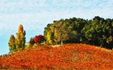Vineyards in the fall (Hayes)