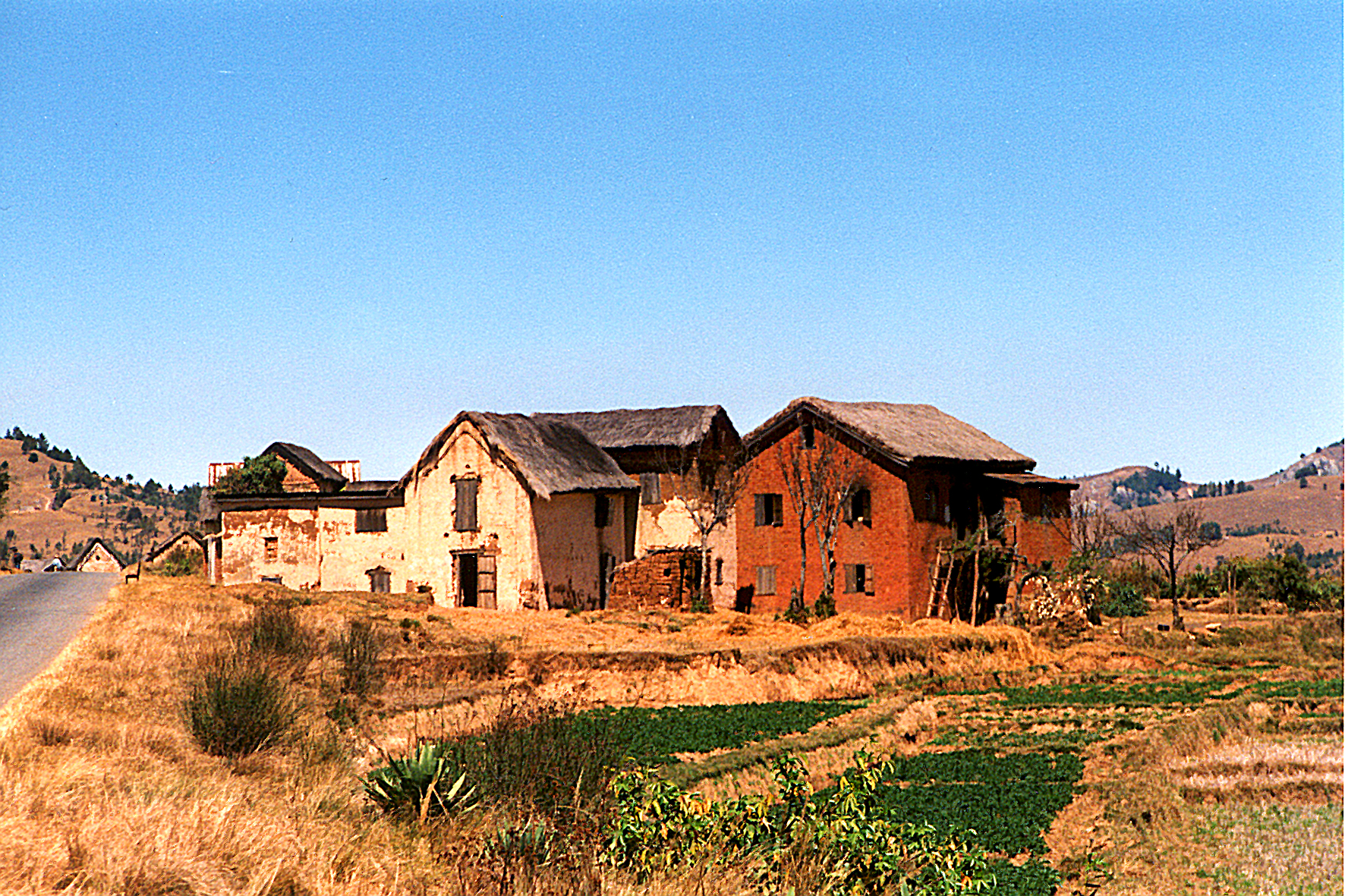 Typical houses
