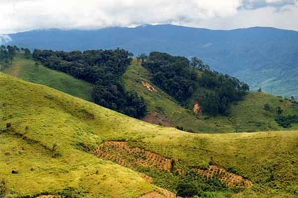 central highlands in vivid green