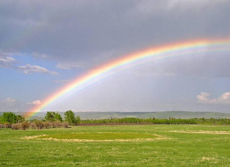 Foothills Rainbow (3,333 views)