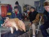 Lechon (litson) party: Dr. Cabatu, Jun, and Hans roasting the pig.