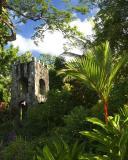 Batik Factory Gardens St Kitts