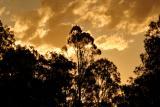 webmt crosby weir sunset.jpg