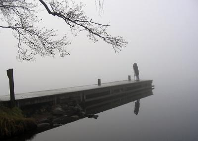 Double focus in the mist.