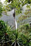 Waterfall outside of Fortuna