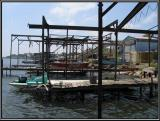 Oyster fishing boats