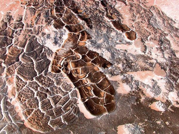 Mud Pots Torso
