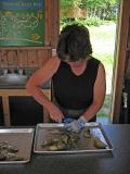 Susan D. shucking fresh Asby Bay oysters