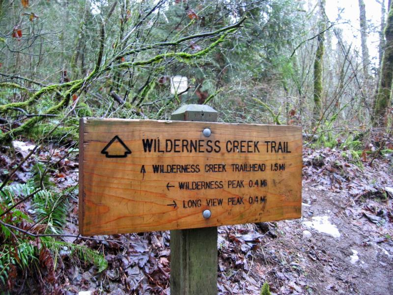 Wilderness Creek Trail