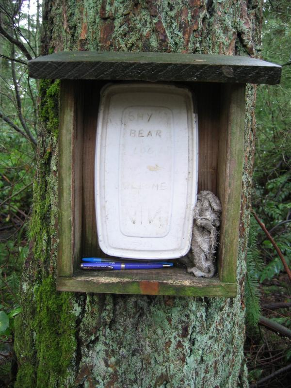 Wilderness Peak Book