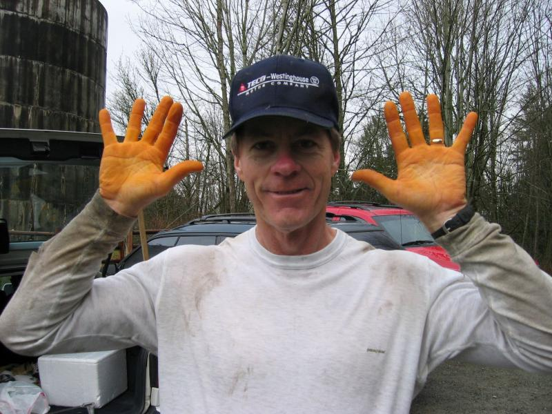 Maximum Orange Hands Bob