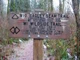 Bagley Seam Trail
