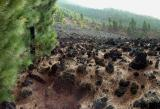 San Juan lava flow, La Palma.  (5)
