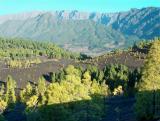 Parque Natural de Cumbre Vieja.  (11)