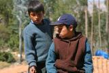 Andean Boys