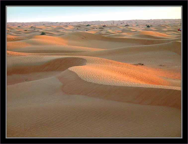 <p> Endless desert</p>