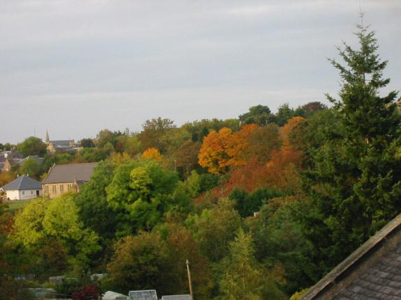 Autumn colours Midlothian.jpg