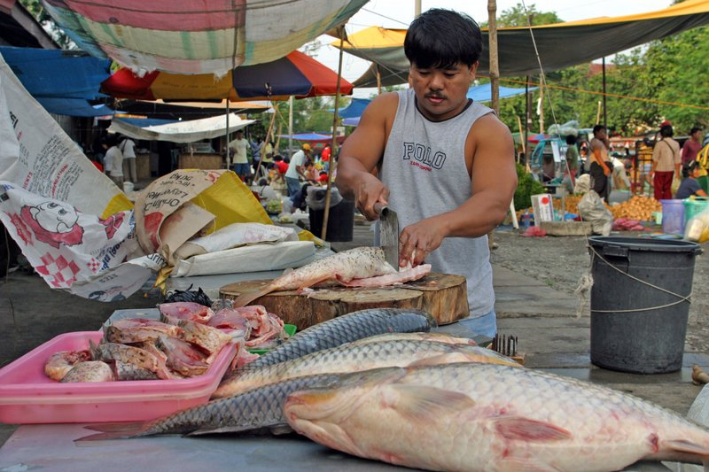 Bagabag Carp Vendor.jpg