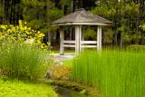 jardin_japonais07.jpg