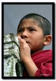 Young Monk at Dali Gompa, Darjeeling